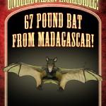 Poster Bat